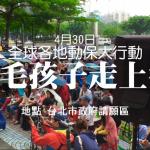 手機拍片:為毛小孩走上街,感動千萬人!